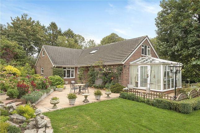 Thumbnail Detached house for sale in Milton Abbas, Blandford Forum, Dorset