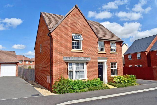 Thumbnail Detached house for sale in Port Stanley Close, Norton Fitzwarren, Taunton
