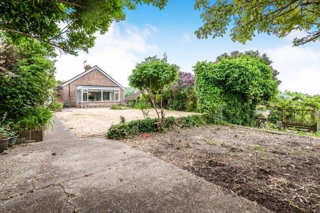 Garden of Donnington Road, Brighton, East Sussex BN2