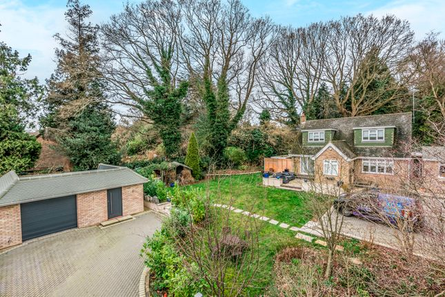 Thumbnail Detached house to rent in Baskerville, Snow Hill, Crawley Down, West Sussex