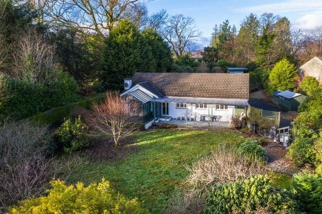 Thumbnail Detached bungalow for sale in Beech Hedge, Old College Lane, Windermere