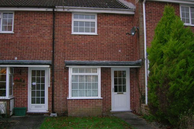 Thumbnail Terraced house to rent in Ash Close, Shaftesbury, Dorset