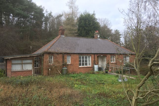 Thumbnail Detached bungalow for sale in Watton Road, Colney, Norwich, Norfolk