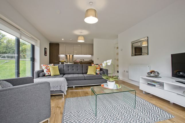 Thumbnail Penthouse to rent in Stoneywood Brae, Dyce, Aberdeen