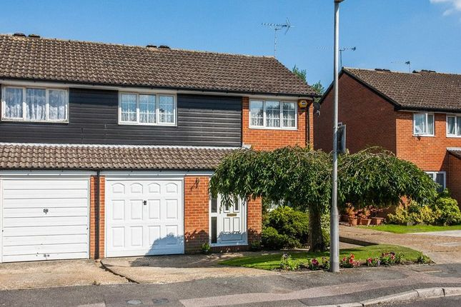 Thumbnail Semi-detached house to rent in The Canter, Crawley, West Sussex.