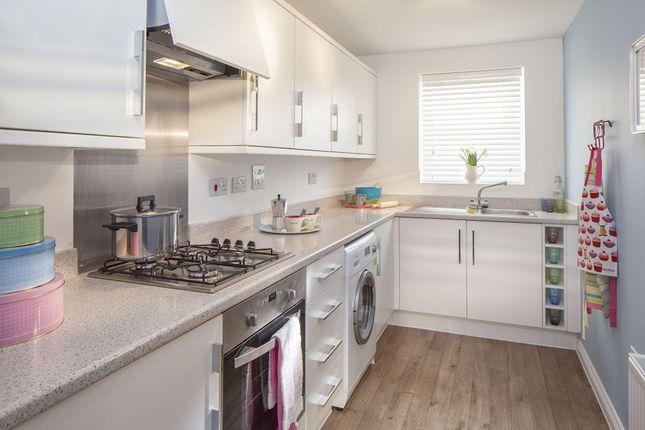 "Thumbnail End terrace house for sale in ""Faversham"" at Carters Lane, Kiln Farm, Milton Keynes"