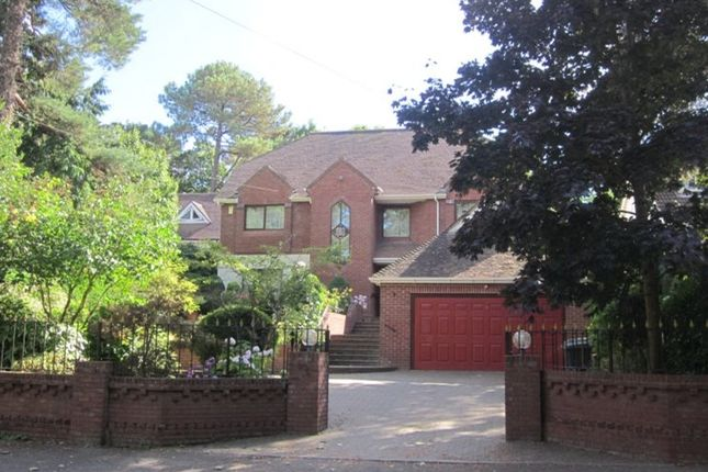 Thumbnail Detached house to rent in Ravine Road, Canford Cliffs, Poole