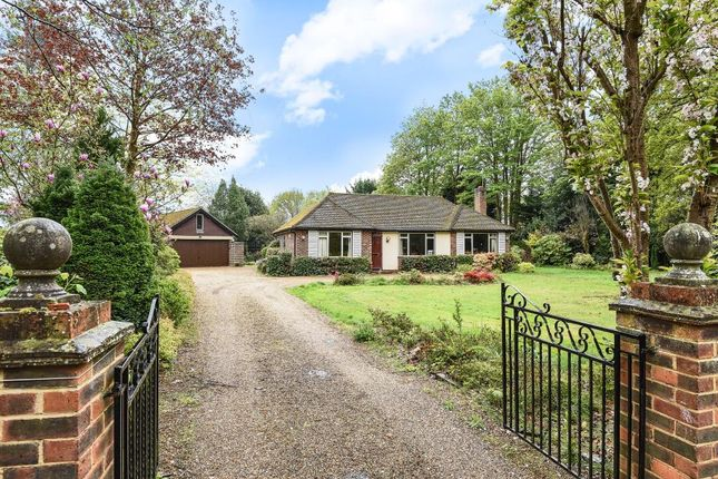 Thumbnail Bungalow to rent in The Spinney, Sunningdale