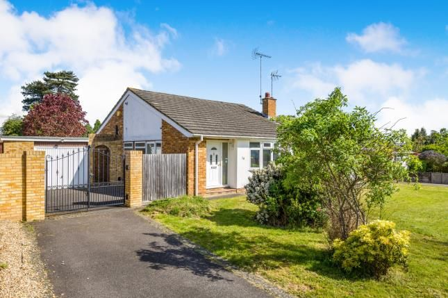 Thumbnail Bungalow for sale in Blackwater, Hampshire