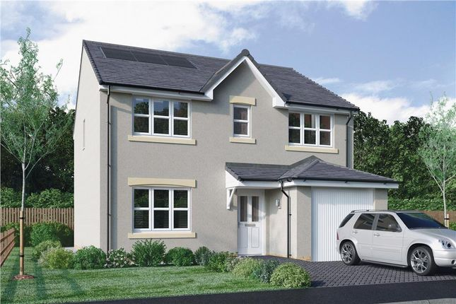 "Thumbnail Detached house for sale in ""Lyle"" at Brotherton Avenue, Livingston"