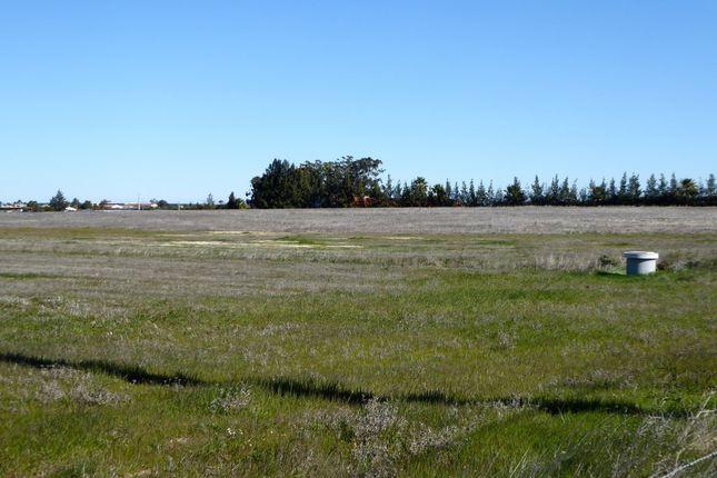 Thumbnail Land for sale in 13 Land For Agriculture With Irrigation, Beja, Portugal, Beja (City), Beja, Alentejo, Portugal