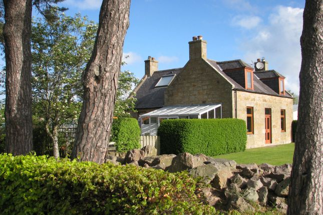 Thumbnail Detached house for sale in Garmouth, Moray