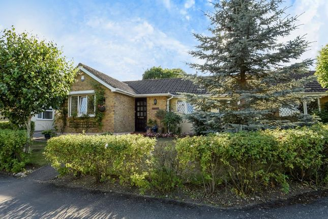 Thumbnail Detached bungalow for sale in Englefield Green, Surrey