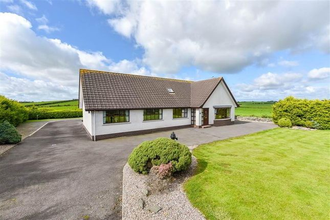 Thumbnail Detached house for sale in Ballybuttle Road, Millisle, Newtownards