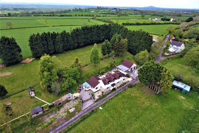Thumbnail Property for sale in Townsend Lane, Wedmore