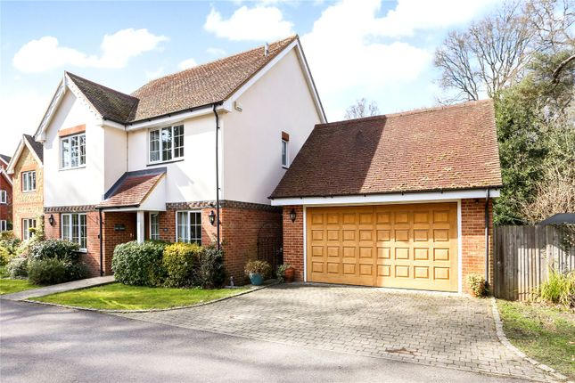 Thumbnail Detached House For Sale In The Warren Passfield Liphook Hampshire