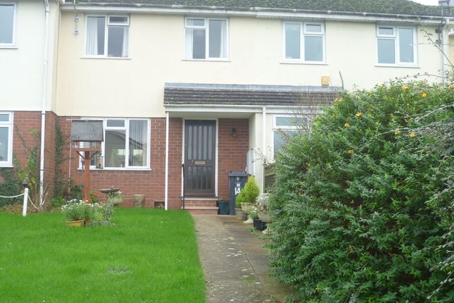 Thumbnail Terraced house to rent in Marlborough Close, Musbury, Axminster