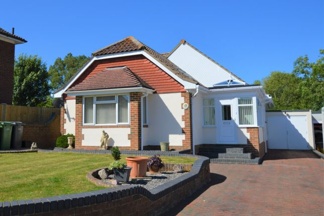 Thumbnail Detached bungalow for sale in Gillsmans Drive, St Leonards-On-Sea