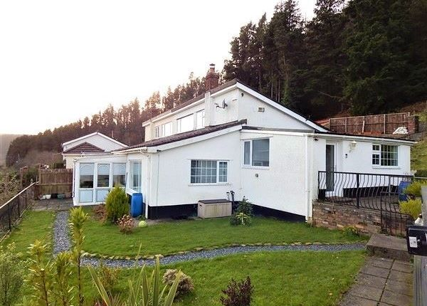Thumbnail Bungalow for sale in Ty Dan Y Wal Road, Cwmtillery, Abertillery