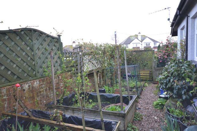 Side Garden of East Budleigh Road, Budleigh Salterton, Devon EX9