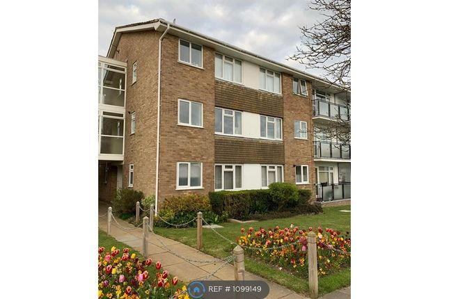 Thumbnail Flat to rent in Westbrook, Saltdean