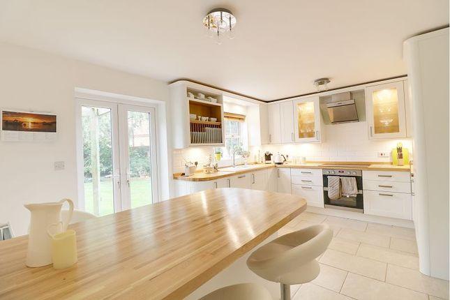 Thumbnail Detached house for sale in Kestrel Close, Kingsnorth, Ashford
