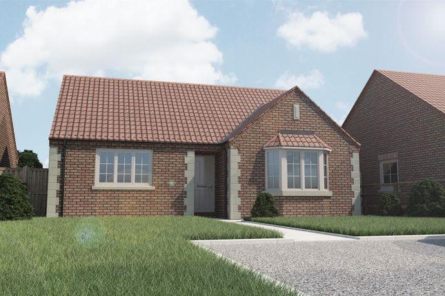 Thumbnail Detached bungalow for sale in Plot 6 Walcott Grove, Walcott Road, Billinghay, Lincolnshire