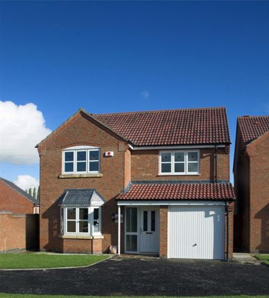 Thumbnail Detached house for sale in Soke Road, Newborough, Peterborough