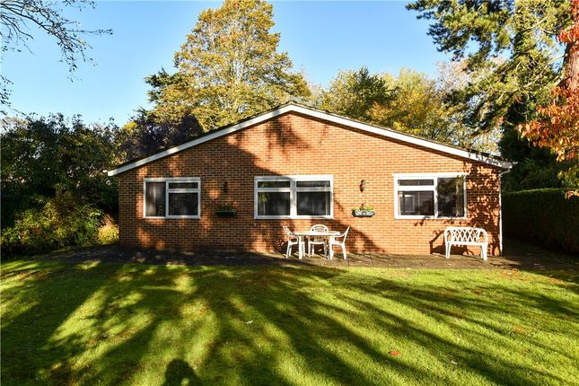 Thumbnail Bungalow for sale in Amberley Court, Maidenhead, Berkshire