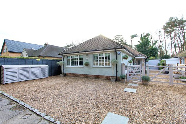 Thumbnail Detached bungalow for sale in Coldharbour Lane, Pyrford, Woking