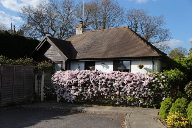 Thumbnail Bungalow to rent in Yew Tree Close, Cowfold, Horsham