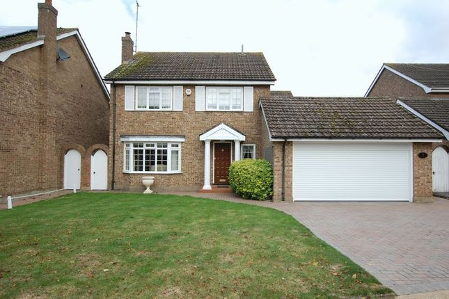 Thumbnail Detached house for sale in Paddock Close, Orsett, Grays