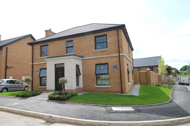Thumbnail Detached house for sale in Strawberry Hill Lane, Ballynahinch Road, Lisburn
