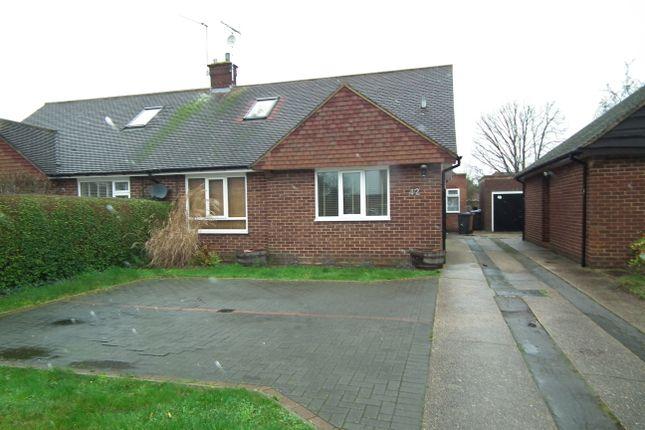Thumbnail Semi-detached bungalow to rent in Skimpans Close, Welham Green