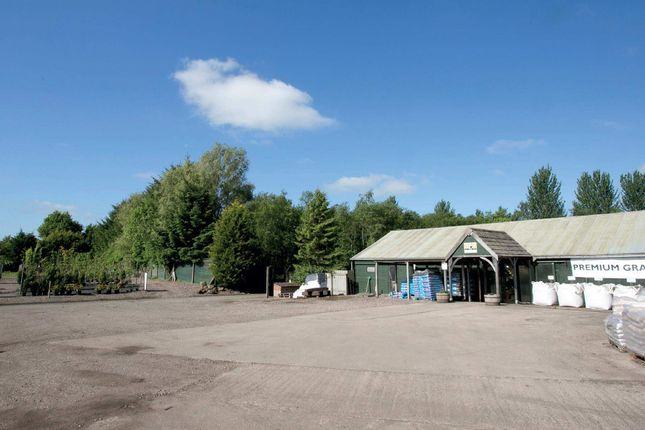 Thumbnail Retail premises for sale in Hedgehogs Nursery & Scotplants Direct, Glenrothes