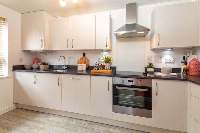"Thumbnail Terraced house for sale in ""Norbury"" at Hanworth Lane, Chertsey"