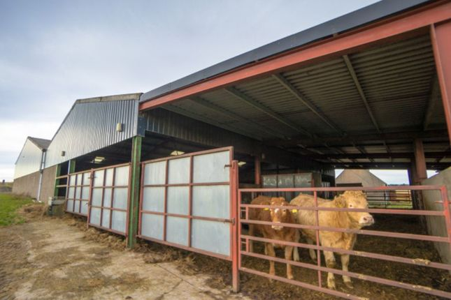 Commercial Property Rent Aberdeenshire