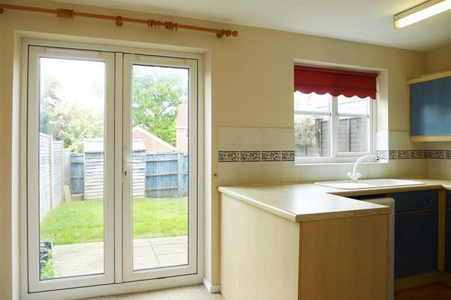 Thumbnail Property to rent in St Lukes Mews, Cotford St. Luke, Taunton