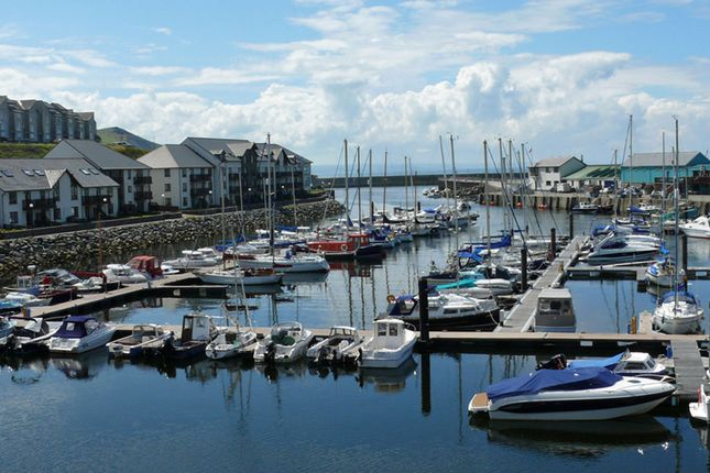 Thumbnail Flat to rent in Y Lanfa, Aberystwyth