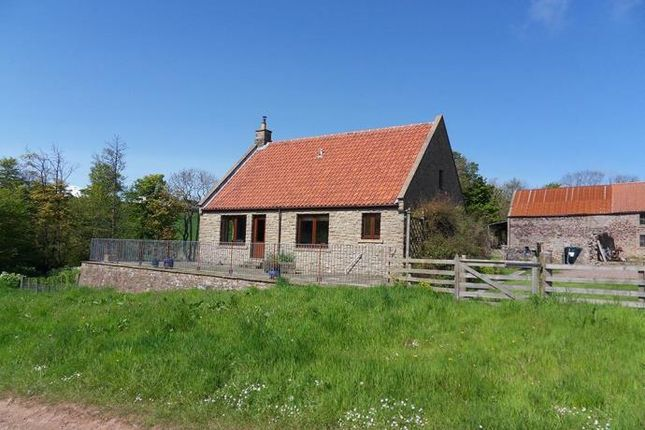 Thumbnail Detached bungalow to rent in 2 Abbeypark Steading, Templehall, Coldingham