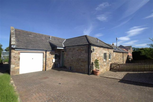 Thumbnail Cottage for sale in The Lamb, Ancroft, Berwick-Upon-Tweed