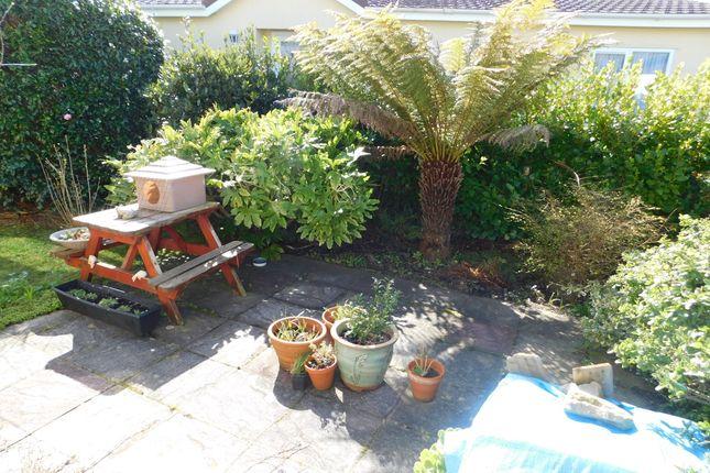 Garden of Eastern Green, Penzance TR18