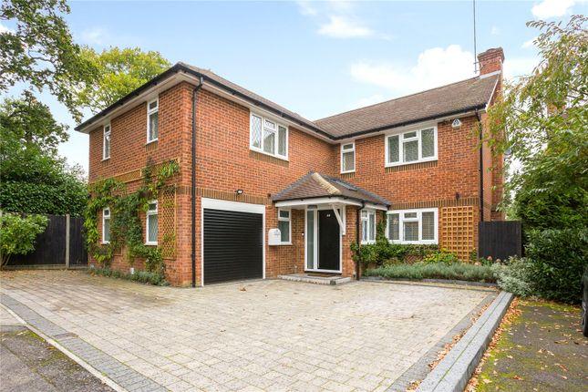Thumbnail Detached house for sale in Hazel Road, Park Street, St. Albans, Hertfordshire