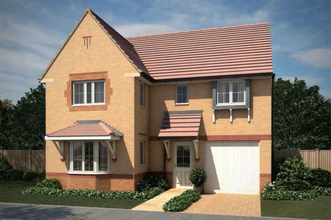 "Thumbnail Detached house for sale in ""Halstead"" at Bearscroft Lane, London Road, Godmanchester, Huntingdon"
