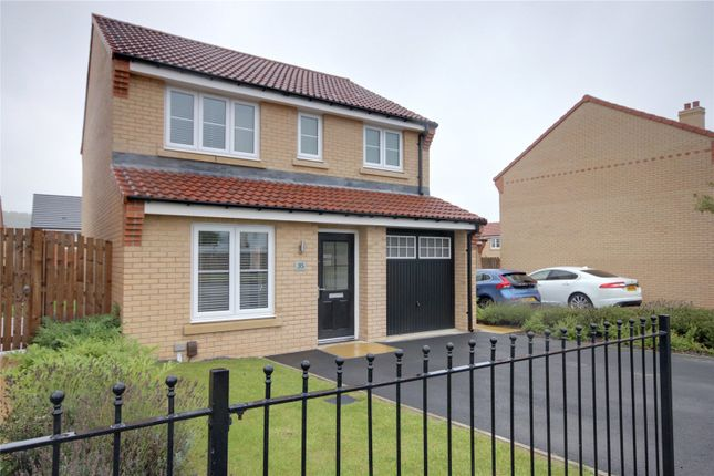 Thumbnail Detached house to rent in Nightingale Road, Guisborough
