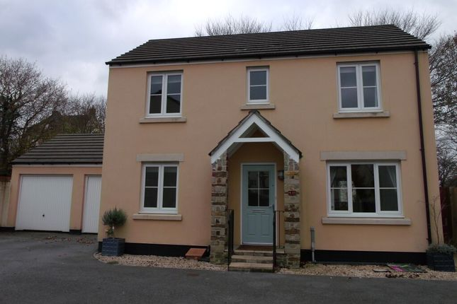 Thumbnail Detached house to rent in Dipper Drive, Whitchurch, Tavistock
