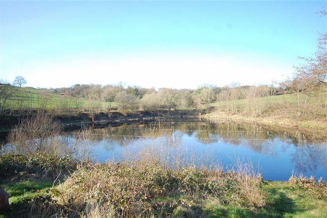 Thumbnail Farm for sale in Lindway Lane, Brackenfield, Alfreton