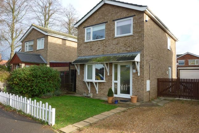 Thumbnail Detached house to rent in Shelduck Drive, Snettisham, King's Lynn