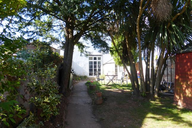 Thumbnail Property to rent in Upton Road, Torquay