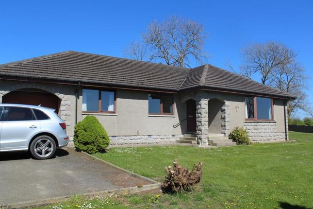 Thumbnail Bungalow to rent in Oldmeldrum, Inverurie
